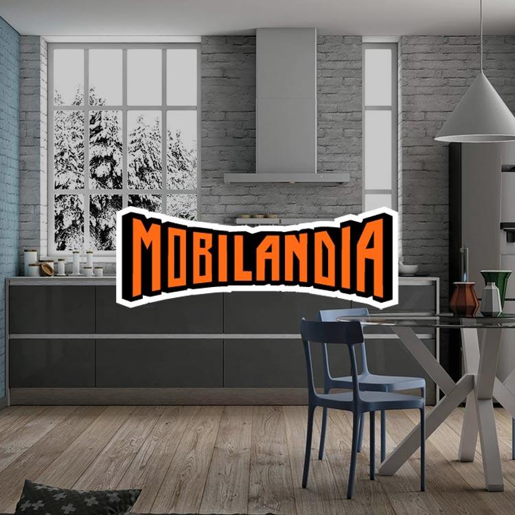 Mobilandia portfolio Web Brand